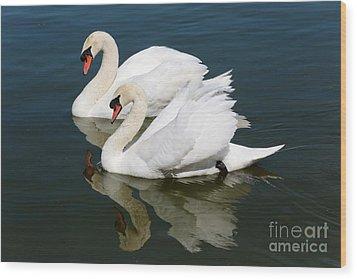 Pretty Swan Pair Wood Print by Carol Groenen