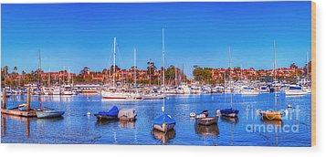 Promontory Point - Newport Beach Wood Print by Jim Carrell