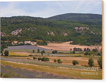 Provence Landscape Wood Print by Bob Phillips