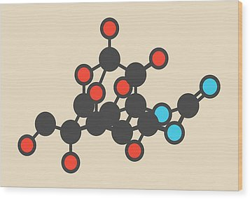Pufferfish Neurotoxin Molecule Wood Print by Molekuul