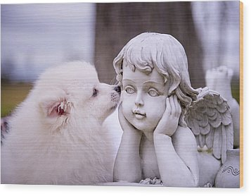 Puppy And Angel  Wood Print by Bonnie Barry