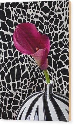 Purple Calla Lily Wood Print by Garry Gay