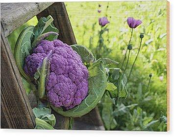 Purple Cauliflower Wood Print by Aberration Films Ltd