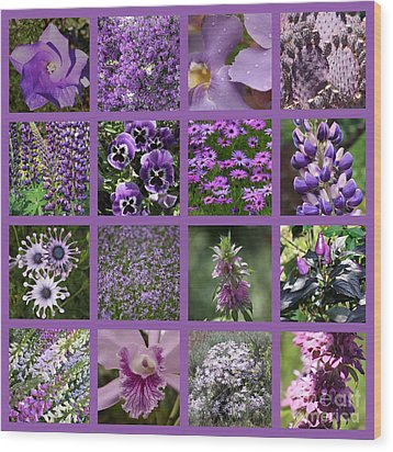 Purple In Nature Collage Wood Print by Carol Groenen