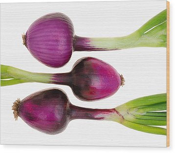 Purple Onions  Wood Print by Jim Hughes
