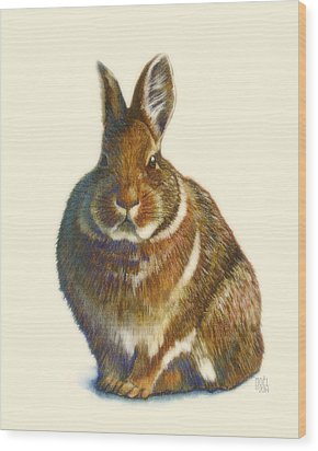 Rabbit Wood Print by Catherine Noel