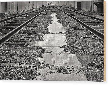 Railroad 5715bw Wood Print by Rudy Umans