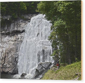 Rainbow Falls Wood Print by Susan Leggett