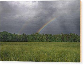 Rainbow Wood Print by Ivan Slosar