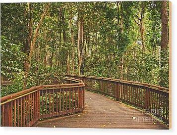 Rainforest Walkway Wood Print by Bob and Nancy Kendrick
