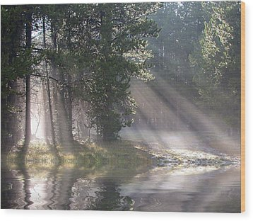 Rays Of Light Wood Print by Shane Bechler