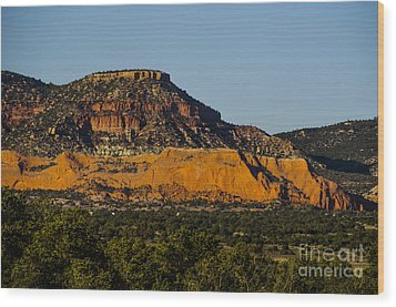 Red And Green Plateau New Mexico Wood Print by Deborah Smolinske