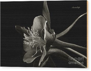 Red Columbine In Black And White Wood Print by Karen Slagle