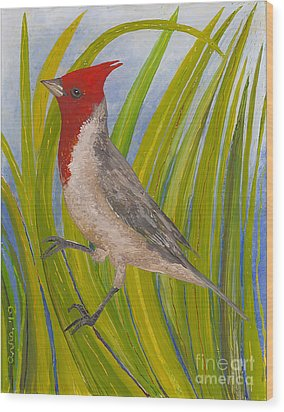 Red-crested Cardinal Wood Print by Anna Skaradzinska