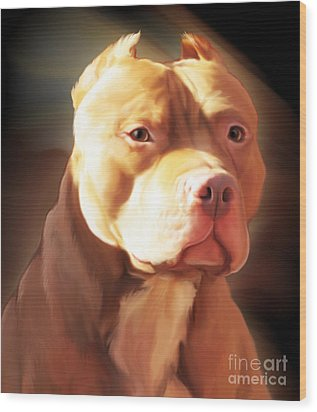 Red Pit Bull By Spano Wood Print by Michael Spano
