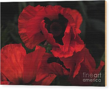 Red Ruffles Wood Print by Kathleen Struckle