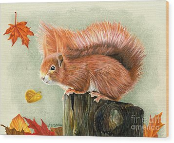 Red Squirrel In Autumn Wood Print by Sarah Batalka