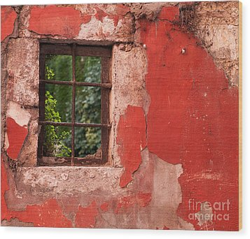 Red Wall Wood Print by Rick Piper Photography