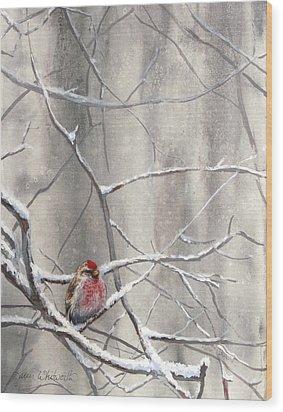 Redpoll Eyeing The Feeder - 1 Wood Print by Karen Whitworth