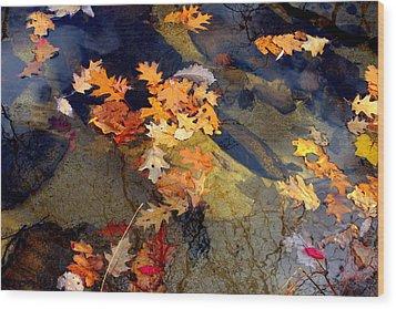 Reflection Wood Print by Marcia Lee Jones
