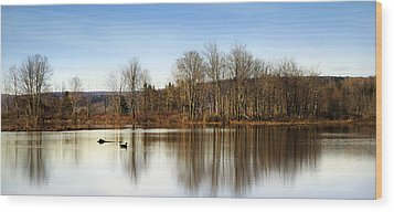 Reflections On Golden Pond Wood Print by Christina Rollo