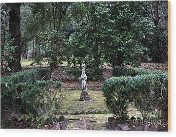 Religion In The Garden Wood Print by John Rizzuto