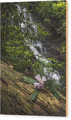 Rhododendron At The Falls Wood Print by Debra and Dave Vanderlaan