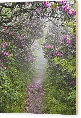 Rhododendron Time In North Carolina Wood Print by Bill Swindaman