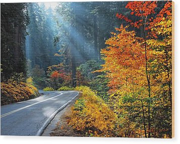 Road To Glory  Wood Print by Lynn Bauer