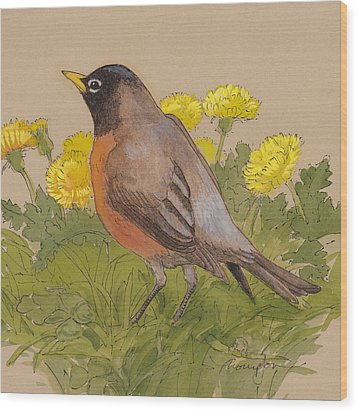 Robin In The Dandelions Wood Print by Tracie Thompson