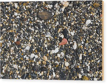 Rocks On The Beach Wood Print by Steven Ralser