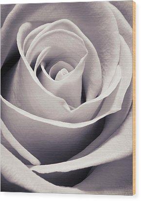 Rose Wood Print by Adam Romanowicz