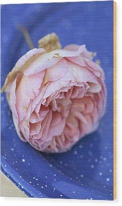 Rose Flower Wood Print by Frank Tschakert