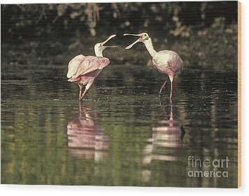 Roseate Spoonbill Wood Print by Ron Sanford