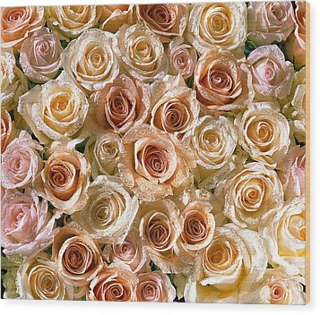 Roses 1 Wood Print by Mauro Celotti