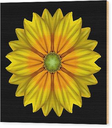 Rudbeckia Prairie Sun I Flower Mandala Wood Print by David J Bookbinder