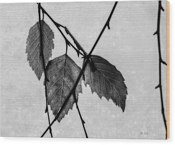 Rule Of Three Wood Print by Bob Orsillo