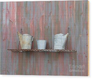 Rustic Garden Shelf Wood Print by Ann Horn
