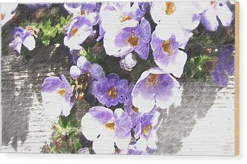 Rustic Planter Box Wood Print by Beverly Guilliams