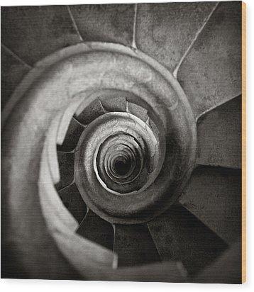 Sagrada Familia Steps Wood Print by Dave Bowman