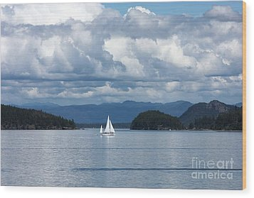 Sailing In The San Juans Wood Print by Carol Groenen