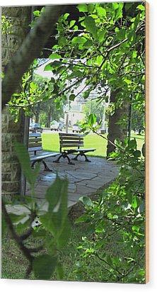 Sam Lawrence Park Hamilton 2 Wood Print by Danielle  Parent