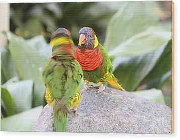 San Diego Zoo - 1212341 Wood Print by DC Photographer