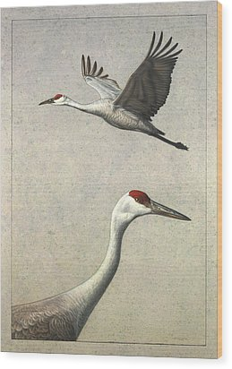 Sandhill Cranes Wood Print by James W Johnson