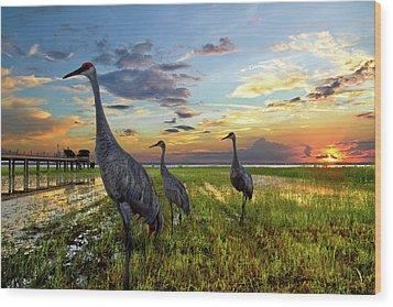 Sandhill Sunset Wood Print by Debra and Dave Vanderlaan