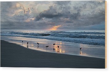 Sandpipers In Paradise Wood Print by Betsy Knapp