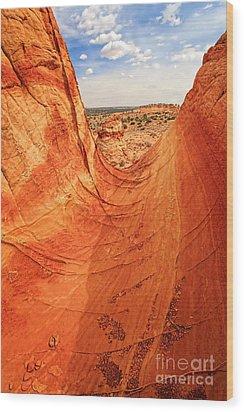 Sandstone Bowl Wood Print by Inge Johnsson