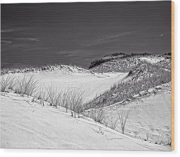 Sandy Neck Dunes 2 Wood Print by Frank Winters