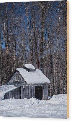 Sap House II Wood Print by Alana Ranney