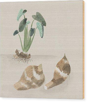 Satoimo Taro Potato  Wood Print by Aged Pixel